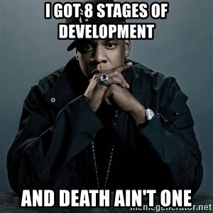 Jay Z problem - I got 8 stages of development and death ain't one