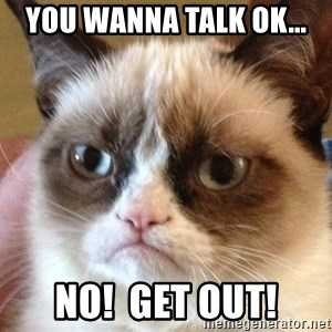 Angry Cat Meme - you wanna talk ok... NO!  get out!