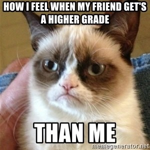 Grumpy Cat  - how i feel when my friend get's a higher grade  than me