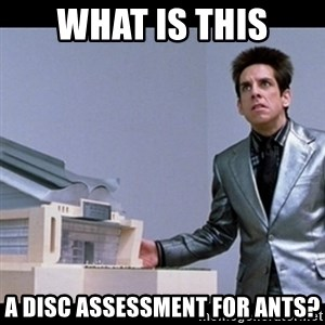 Zoolander for Ants - What is this A DISC assessment for ANTS?