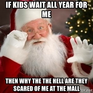 Santa claus - if kids wait all year for me then WHY THE THE HELL ARE THEY SCARED OF ME AT THE MALL