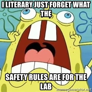 Enraged Spongebob - I literary just forget what the  safety rules are for the lab