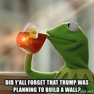 Kermit The Frog Drinking Tea - Did y'all forget that Trump was planning to build a wall?