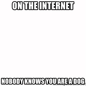 fondo blanco white background - On the Internet Nobody knows you are a dog