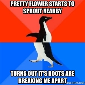 Socially Awesome Awkward Penguin - Pretty flower starts to sprout nearby turns out it's roots are breaking me apart