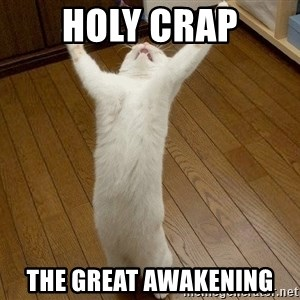 praise the lord cat - holy crap the great awakening