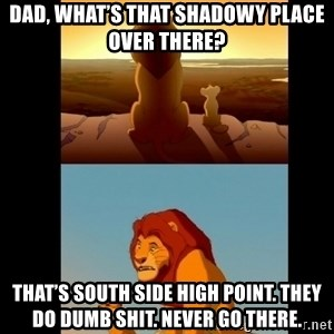 Lion King Shadowy Place - Dad, what's that shadowy place over there? That's south side High Point. They do dumb shit. Never go there.