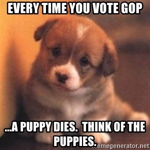 cute puppy - Every time you vote GOP ...A puppy dies.  Think of the puppies.