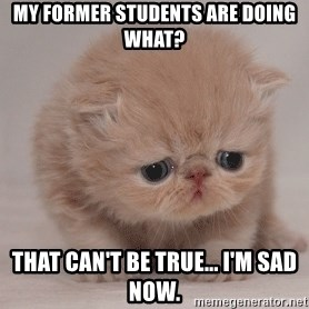 Super Sad Cat - My former students are doing what? That can't be true... I'm sad now.
