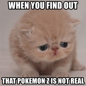 Super Sad Cat - when you find out  that Pokemon z is not real