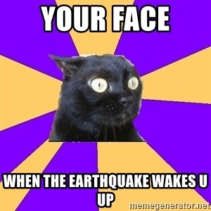 Anxiety Cat - your face  when the earthquake wakes u up