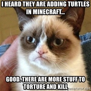 Grumpy Cat  - i heard they are adding turtles in minecraft... Good. there are more stuff to torture and kill