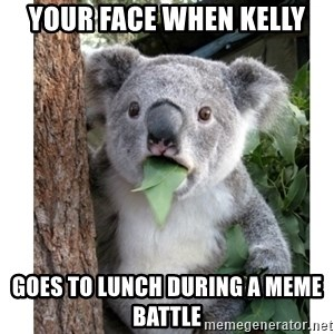 surprised koala - Your face when Kelly goes to lunch during a meme battle