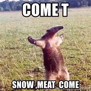 Anteater - Come T snow ,meat  Come