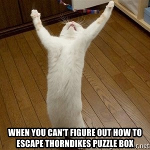 praise the lord cat - When you can't figure out how to escape Thorndikes puzzle box