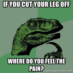 Philosoraptor - if you cut your leg off  where do you feel the pain?