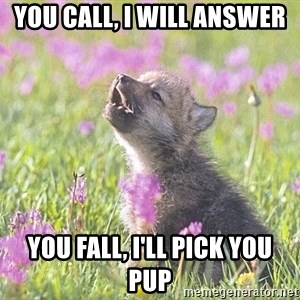 Baby Insanity Wolf - You call, I will answer  You fall, I'll pick you pup