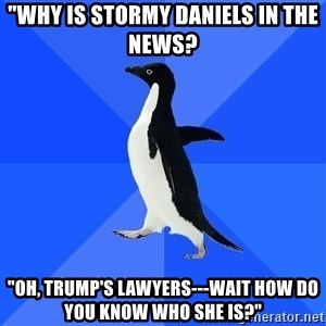 """Socially Awkward Penguin - """"Why is Stormy Daniels in the news? """"Oh, Trump's lawyers---Wait how do you know who she is?"""""""