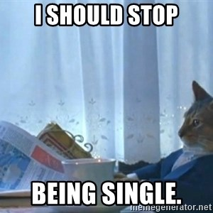 newspaper cat realization - I should stop Being single.