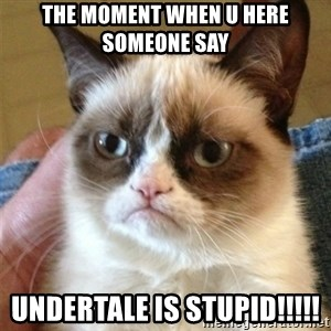 Grumpy Cat  - The moment when u here someone say UNDERTALE IS STUPID!!!!!