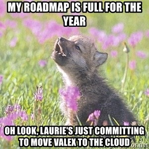 Baby Insanity Wolf - MY roadmap is full for the year oh look, laurie's just committing to move valex to the cloud