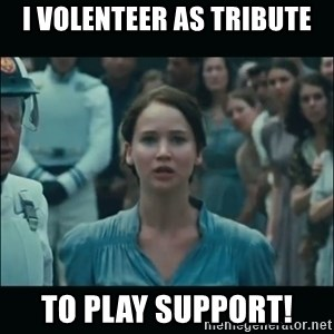 I volunteer as tribute Katniss - i volenteer as tribute to play support!