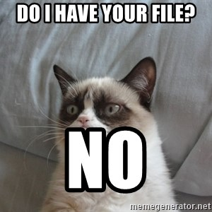 Grumpy cat good - do i have your file? NO