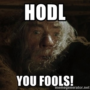 gandalf run you fools closeup - HODL You fools!