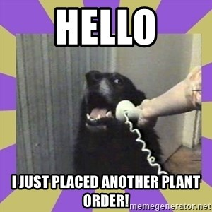 Yes, this is dog! - hello I just placed another plant order!