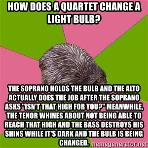 """Choir Kiwi - How does a quartet change a light bulb? The Soprano holds the bulb and the Alto actually does the job after the soprano asks """"Isn't that high for you?"""" Meanwhile, the Tenor whines about not being able to reach that high and the Bass destroys his shins while it's dark and the bulb is being changed."""