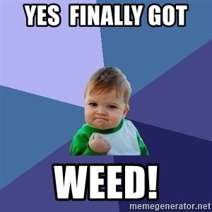 Success Kid - yes  finally got  Weed!