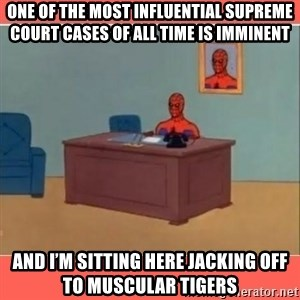 Masturbating Spider-Man - One of the most influential Supreme Court cases of all time is imminent And I'm sitting here jacking off to muscular tigers