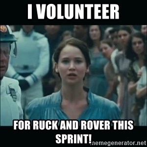 I volunteer as tribute Katniss - I volunteer For ruck and rover this sprint!