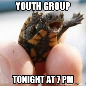 angry turtle - Youth group tonight at 7 pm