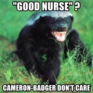 "Honey Badger Actual - ""Good Nurse"" ?  Cameron-Badger don't care"