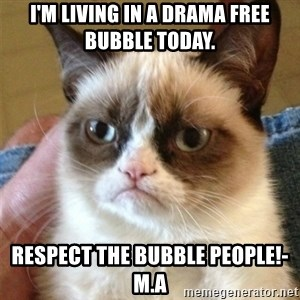 Grumpy Cat  - I'm living in a drama free bubble today. Respect the bubble people!- M.A
