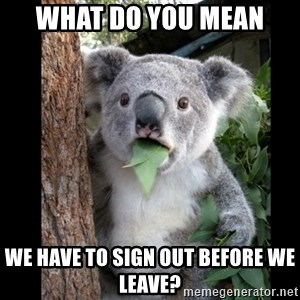 Koala can't believe it - what do you mean  we have to sign out before we leave?