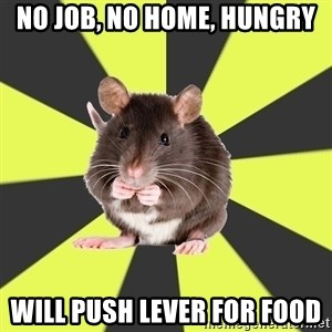 Survivor Rat - No job, no home, hungry Will push lever for food