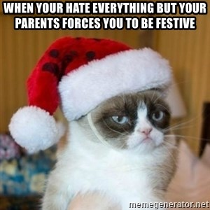 Grumpy Cat Santa Hat - when your hate everything but your parents forces you to be festive