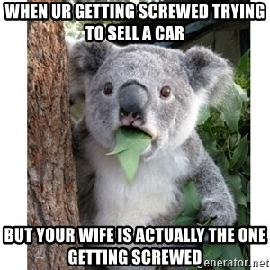 surprised koala - When ur getting screwed trying to sell a car But your wife is actually the one getting screwed