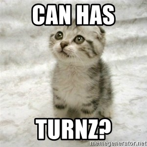 Can haz cat - can has  turnz?