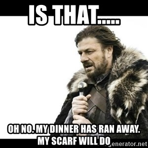 Winter is Coming - is that..... oh no. my dinner has ran away. my scarf will do