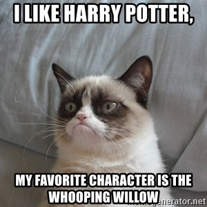 Grumpy cat good - i like harry potter,  my favorite character is the whooping willow