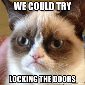 Angry Cat Meme - We could try  locking the doors