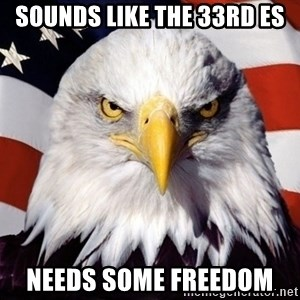 American Pride Eagle - Sounds like the 33rd ES Needs some freedom