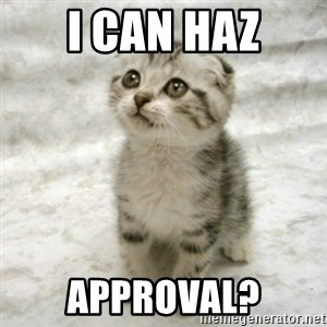 Can haz cat - I Can haz approval?