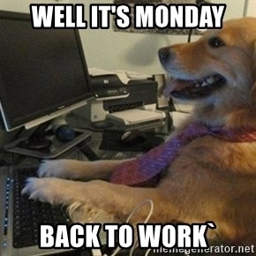 I have no idea what I'm doing - Dog with Tie - Well it's monday back to work`