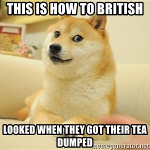 so doge - this is how to British   looked when they got their tea dumped