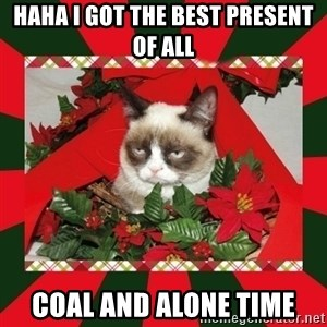 GRUMPY CAT ON CHRISTMAS - haha i got the best present of all coal and alone time
