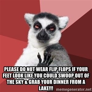 Chill Out Lemur - Please do not wear flip flops if your feet look like you could swoop out of the sky & grab your dinner from a lake!!!